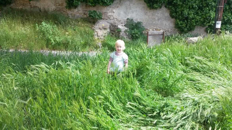 Amit csak a természet adhat a gyereknek